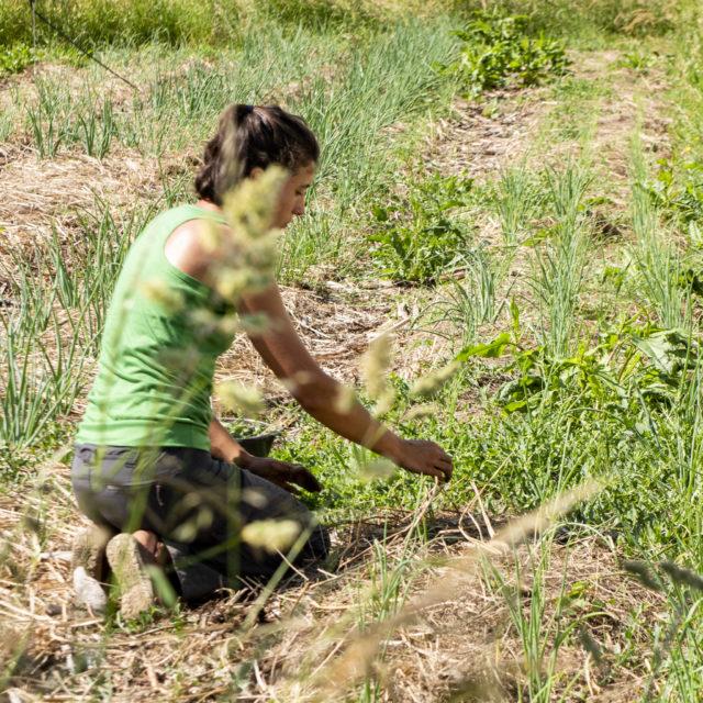 Jeune femme travaillant la terre
